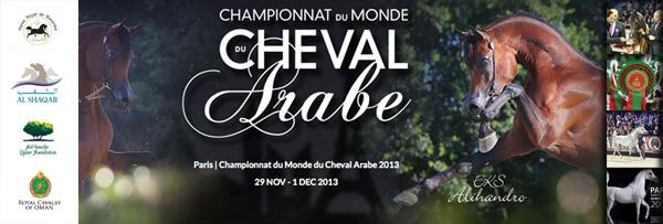 Les médecins d'assistance MIP au Championnat du Monde du Cheval Arabe 2013 : Les plus beaux pur-sang du monde !